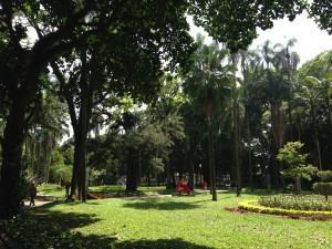 Parque-Luz
